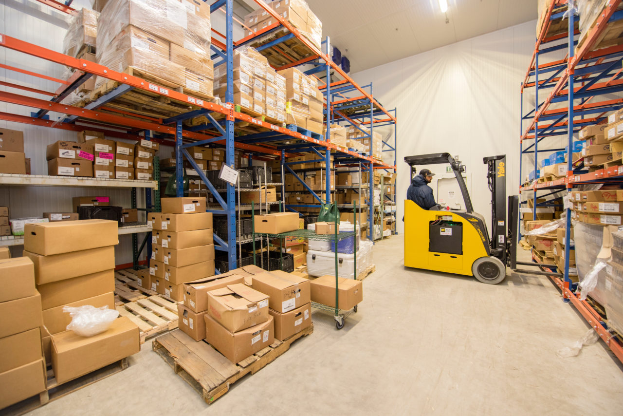 Warehousing - B-Line Delivers